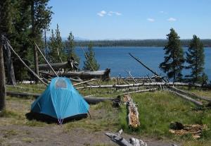 7437675620_1b665c3cf2 Campsite Yellowstone