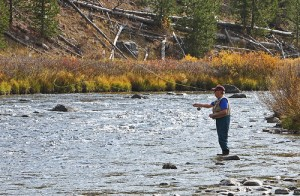 8380841671_c2e00b9724 Fly Fishing Yellowstone